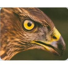 Коврик для мыши пластиковый, орёл, 230 х 180 х 2 мм, BURO